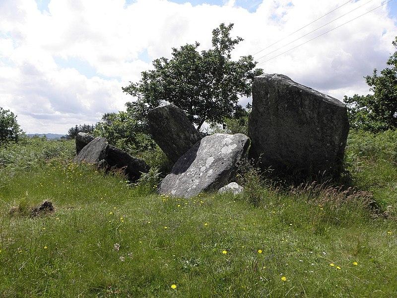 Allée couverte de Castel-Ruffel en Saint-Goazec (29).