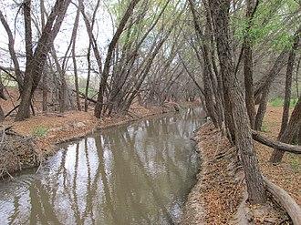 Santa Cruz River (Arizona) - The Santa Cruz River near Red Rock.