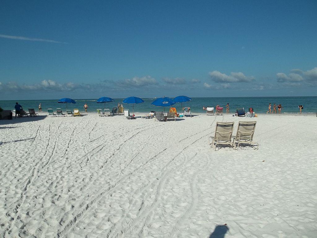 Beach Club Sarasota Ritz Carlton