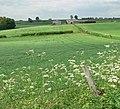 Scam Hazel Farm - geograph.org.uk - 816422.jpg