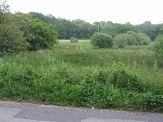 Scarning Fen - Image: Scarning Fen geograph.org.uk 463437
