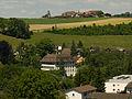 Schloss Reichenbach und Bühlikofen2.jpg