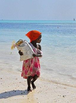 Seaweed Collector, Zanzibar (8022825317)