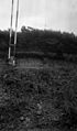 Section at side of raod, Mauley Cross, Yorkshire, 1956. Wellcome M0015988.jpg
