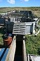 Sheep Dip, Achadh Dubh - geograph.org.uk - 532085.jpg