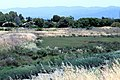 Shoreline Park Mountain View California Salt marsh IMG 2357.jpg