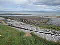 Shoreline near Burr Point - geograph.org.uk - 751143.jpg