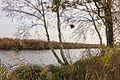 Sloot voor waterbeheersing in het gebied ('It Wikelslân). Locatie, De Alde Feanen in Friesland 04.jpg
