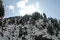 Snow Fall On The Way While Travelling To Lowari Top,Chitral,KPK.jpg