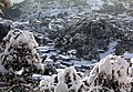 Snow in Mussoorie (14808257956).jpg