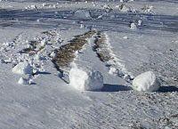 Snow roller Illinois.jpg