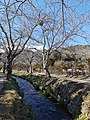 Some village near mountain Fuji 6.jpg