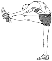 Souplesse/Exercices/Exercices physiques — Wikiversité