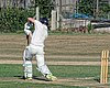 Southwater CC v. Chichester Priory Park CC at Southwater, West Sussex, England 069.jpg