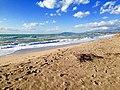 Spiaggia Riserva Fiume Platani.jpg