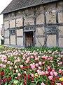 Spring Tulips - Shakespeare's House - geograph.org.uk - 1712742.jpg