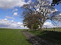 St Oswald's Way at West Harle - geograph.org.uk - 1274122.jpg