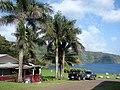 Starr-090506-7446-Roystonea regia-habit and bunkhouse-YMCA Keanae-Maui (24953943425).jpg