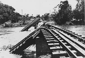 Burdekin River - Flood damaged railway bridge over the Burdekin River, 1917