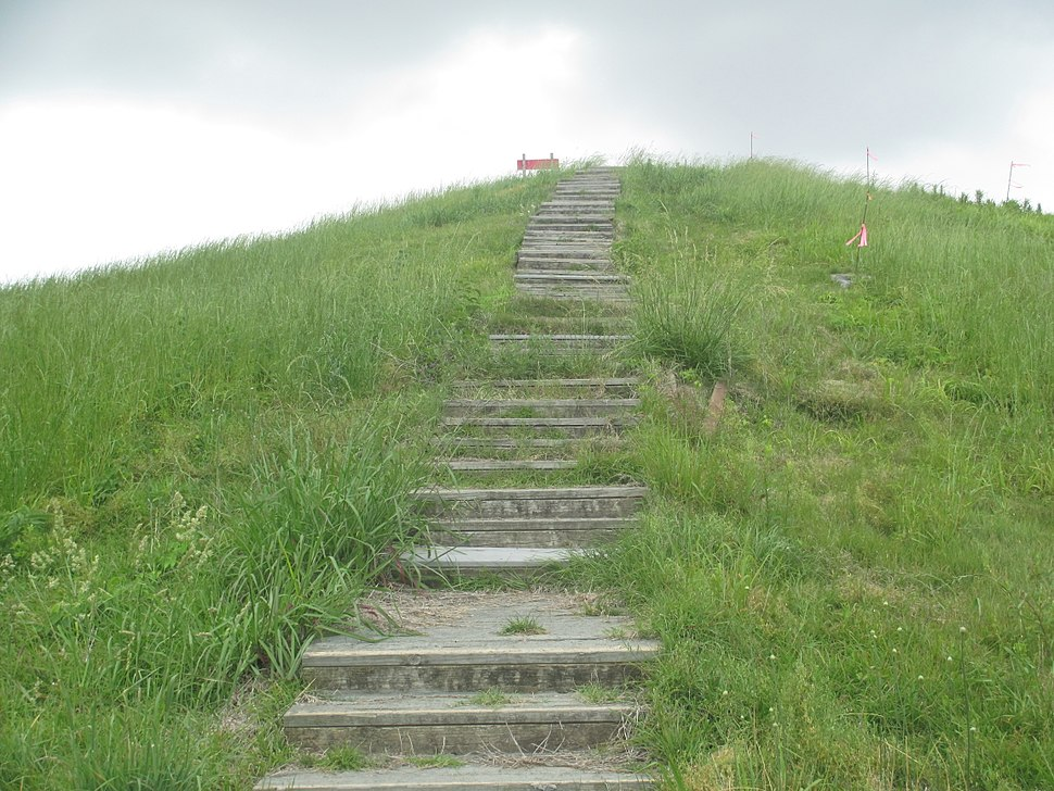Steps to Mound A, Poverty Point IMG 7429