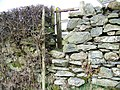 Stile and gate, Lowick - geograph.org.uk - 1800325.jpg