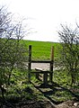 Stile to the road - geograph.org.uk - 715774.jpg