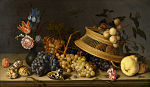 Still Life of Flowers, Fruit, Shells, and Insects by Balthasar van der Ast-BMA.jpg