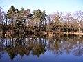 Stockbridge Pond - geograph.org.uk - 1745494.jpg