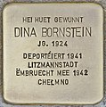 Stolperstein für Dina Bornstein (Differdingen).jpg