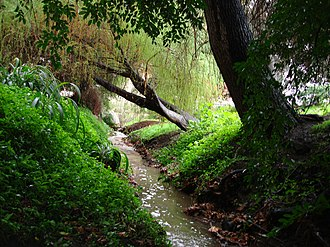 Ballona Creek - Image: Stone Creek UCLA