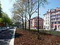 Strasbourg Port du Rhin 2017 2.jpg