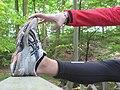 Stretching (2502353079).jpg