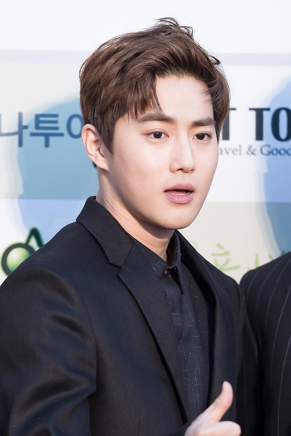 Suho - 2016 Gaon Chart K-pop Awards red carpet