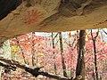 Sunburst pictograph at the Hardison Rockshelter, Petit Jean Mountain, Arkansas.jpg