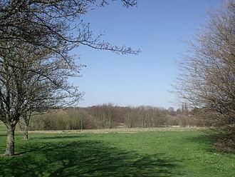 Swanshurst Park - Swanshurst Park seen from Brook Lane in Billesley in March 2012
