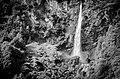 Swiss Waterfall (45515220).jpeg