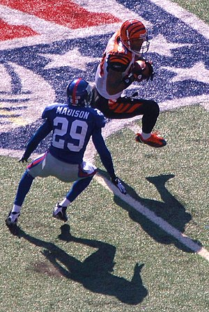 T. J. Houshmandzadeh - Houshmandzadeh with the Bengals playing against the New York Giants on September 21, 2008.