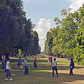 Tai chi in the vista, Kew Gardens.jpg