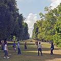 Tai chi in the vista, Kew Gardens.jpg