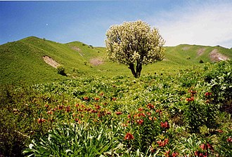 Pamir Mountains - Part of the Pamir Mountain range in springtime