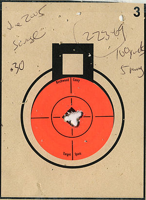 Shot grouping - Image: Target 223 Savage 10FP 5 shot