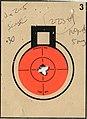 Target 223 Savage 10FP 5 shot.jpg