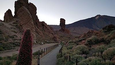 Teide sunset with Tajinaste flower.jpg