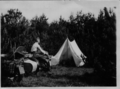 Tent camp with two motorcycles with sidecars on Falster, Denmark.png