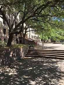 Texas a m dissertations