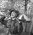 The British Army in North-west Europe 1944-45 B13036.jpg