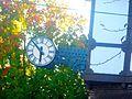 The Clock on Kappel's Clock Shop - panoramio.jpg