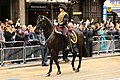 The Kings Troop Royal Horse Artillery (8657841013).jpg
