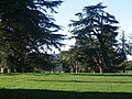 The Kingston Lacy Estate - geograph.org.uk - 398673.jpg