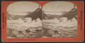 The Maid of the Mist in the Whirlpool Rapids, Niagara, by Barker, George, 1844-1894 2.png